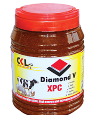 Poultry mineral supplements in Kenya for enhanced poultry products production
