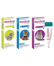 Ticks, Fleas & Mites Control in Cats, Bravecto