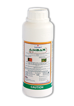 Herbicides in Kenya, amabr 480sc, weed killers, maize crop, beans clean 480 sl, control of annual grass, fast acting, soil types, post emergence herbicide, wide variety, early post emergence herbicide, grasses and broadleaf weeds, pre emergence herbicide, leaf stage weeds in beans, systemic post emergence broadleaf weeds
