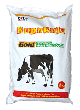 Kupakula Gold Dairy Cattle Protein Supplements for Milk, CKL Africa
