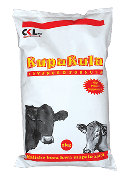 KUPAKULA Advanced Dairy Cows Protein Supplement, CKL AFrica
